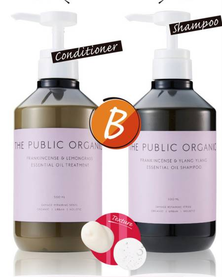 The Public Organic Super Positive Shampoo + Hair Treatment DRS