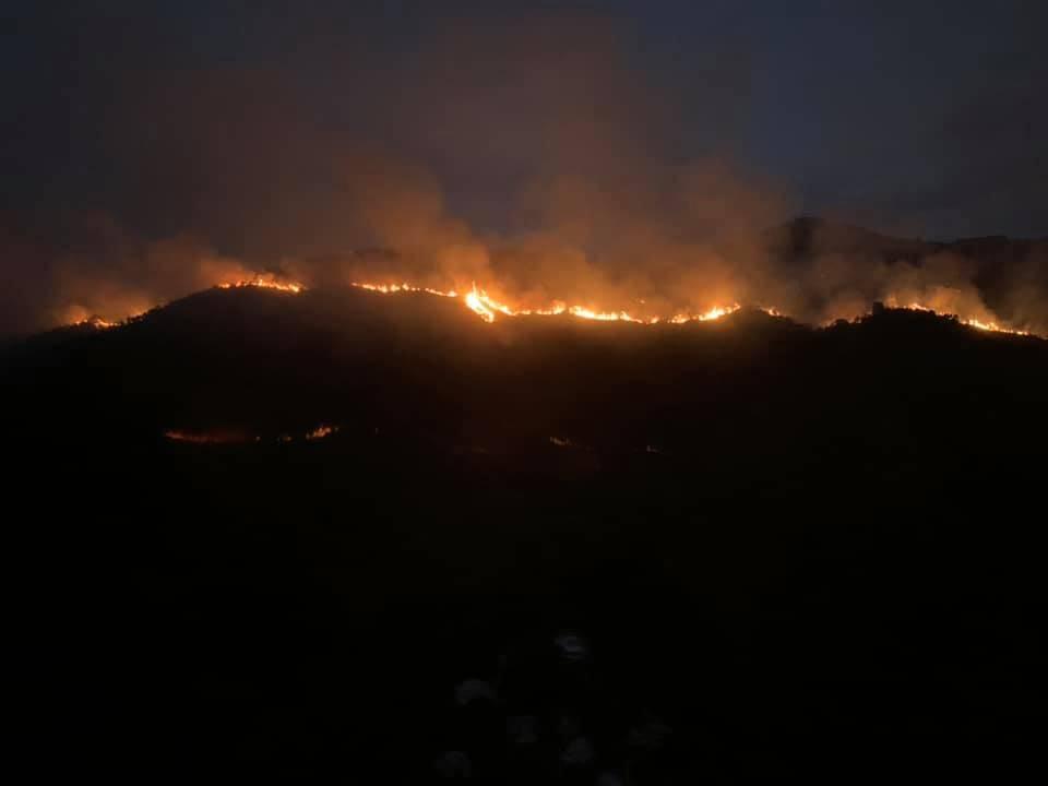 馬鞍山郊野公園大片林木被燒毀 行山者要愛護大自然