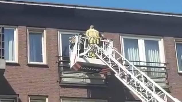 安老院防疫謝絕探訪 消防借雲梯助見爺爺最後一面