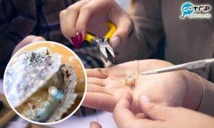西貢一日遊|香港唯一珍珠導賞團 即場採珍珠製飾物!另加推介餐廳