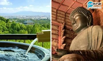 日本新酒店 | 奈良若草山ANDO HOTEL五月開幕 融合自然絕景及都市景色 距離JR近鐵10分鐘車程