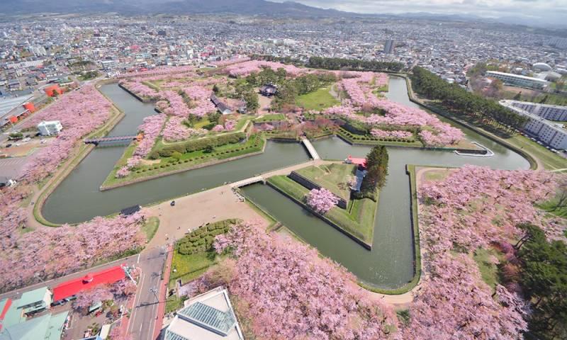 【日本熱話】「北海道」還是「北海」?當地居民超困擾:我也不知道