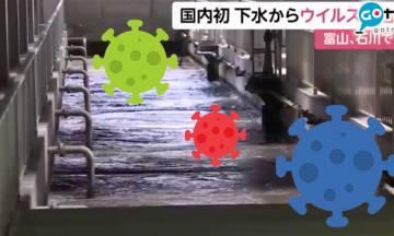 日本國內首例!兩縣下水道驚現新冠肺炎病毒 或能預測第二波傳播