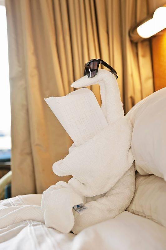 花點心思,加點小道具,讓毛巾動物看起來更有趣!