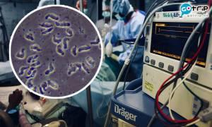 美國爆食腦蟲案例 歷年感染案例僅4人存活 可從鼻腔進入人體