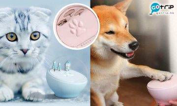 寵物肉球拓, 寵物掌印紀念球, 日本話題, 毛孩精品, 肉球裝飾, DIY
