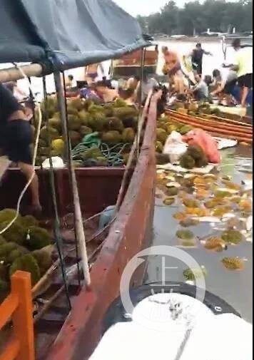 撈呀撈(影片截圖)