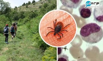 新布尼亞病毒中國大爆發 感染死亡率近10% 與新冠病毒一樣可以人傳人!
