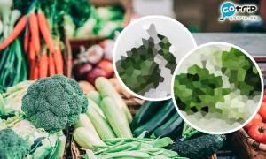 食菜可抗新冠肺炎!研究稱兩類蔬菜有機會減低新冠肺炎死亡率