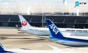 疫情打擊航空業 日本首相顧問建議ANA及JAL合併 網民:改咩名好?