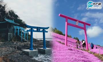 鳥居不止朱紅色!盤點日本9種顏色鳥居 隱世神社竟藏七彩鳥居