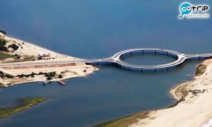 烏拉圭跨湖大橋被嘲環狀設計無聊兼無用?原來背後有原因