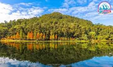 流水響水塘行山路線|天空之鏡、落羽松紅葉|零難度新手郊遊路線