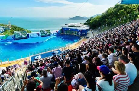 爭取水上樂園在8、9月投入服務。(圖片來源:Ocean Park)