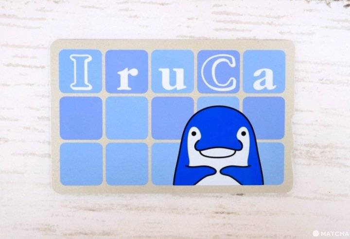 香川縣高松市的琴平電鐵的交通IC卡「IruCa」,日語「需要嗎」跟「海豚」的發音都是「いるか」(iruka)