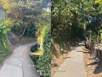 這段路都是平坦易走的水泥路