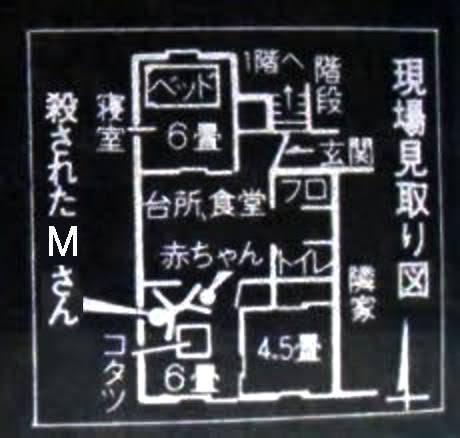 圖為單位平面圖,左上角為睡房,左下角為客廳(圖片來源:twitter@_Irmscher)