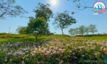 花卉展2021|荔枝角公園+九龍公園期間限定 杜鵑花海+四季花床