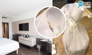 五星級酒店房間廁紙黏滿糞便 港人入住嚇到手軟:幾核突