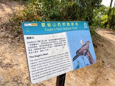 當見到鷹巢山自然教育徑的路牌,從這段石級上去