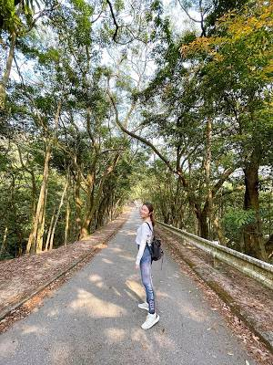 沿路上來,兩旁大樹都充滿著遠離都市的自然氣息。