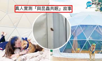 香港大熱星空宿營被負評 房間滿佈小強+木虱、場主垃圾隨處擺