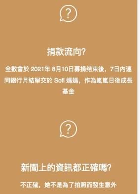 Sofi友人開設的悼念網站,澄清她不是為了拍照而發生意外。(圖片來源:imissyousophia網站)